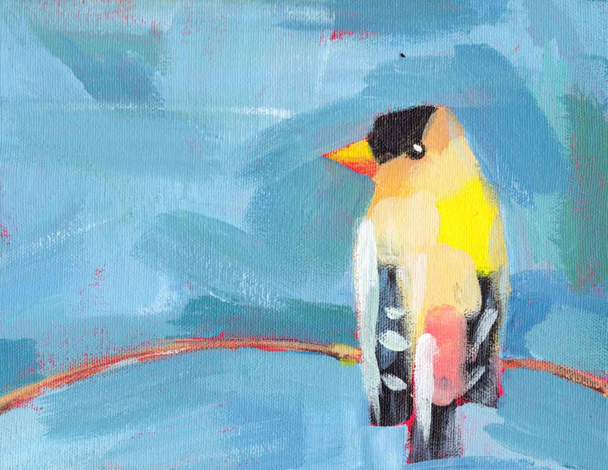 """Finch"" - acrylic on canvas, December 2017"